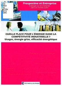 Quelle place pour la compétitivité industrielle?: usages, énergie grise, efficacité énergétique